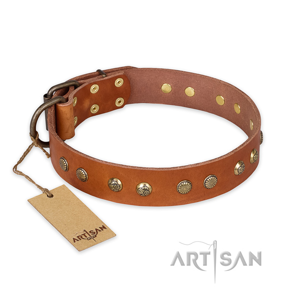 Unusual full grain natural leather dog collar with corrosion resistant buckle