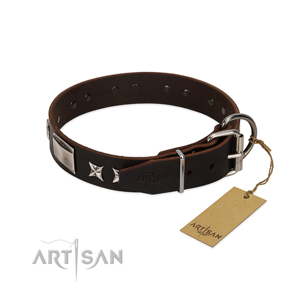Trendy collar of full grain natural leather for your attractive pet
