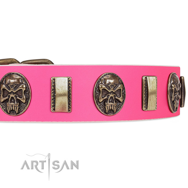 Corrosion proof studs on full grain natural leather dog collar for your doggie
