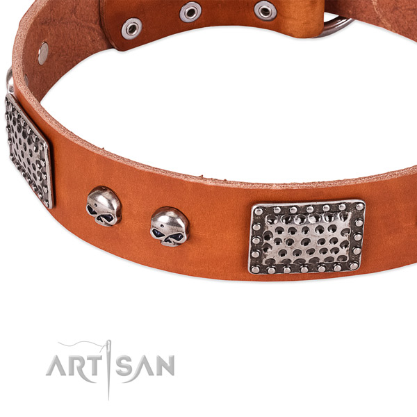 Corrosion resistant buckle on full grain natural leather dog collar for your four-legged friend