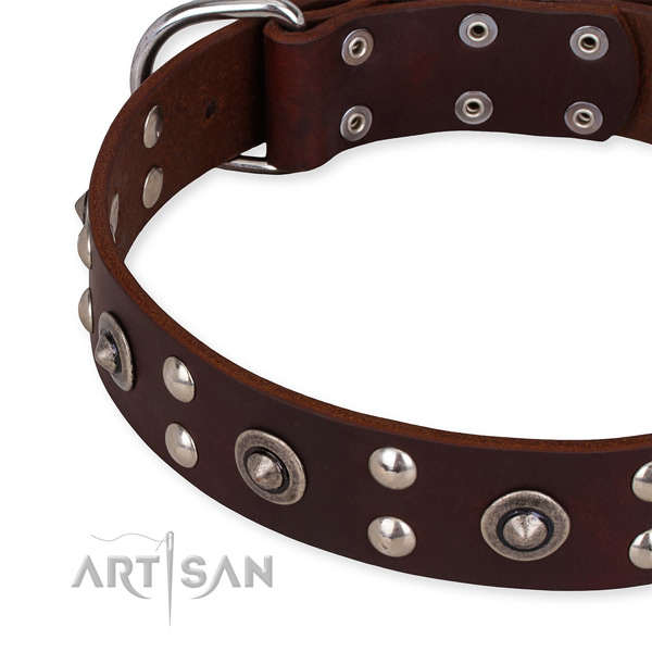 Genuine leather collar with rust-proof D-ring for your impressive canine