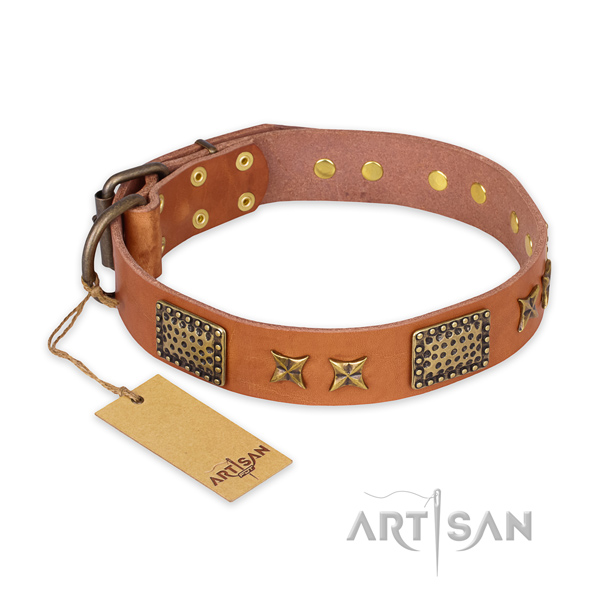 Extraordinary full grain leather dog collar with rust resistant fittings