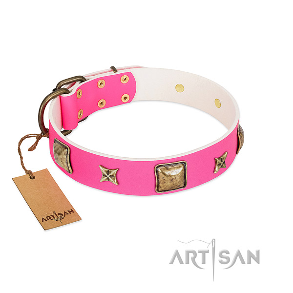 Natural leather dog collar of flexible material with awesome decorations