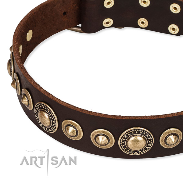 Quality genuine leather dog collar handmade for your handsome canine