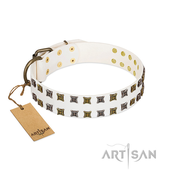 Full grain natural leather collar with exquisite decorations for your doggie