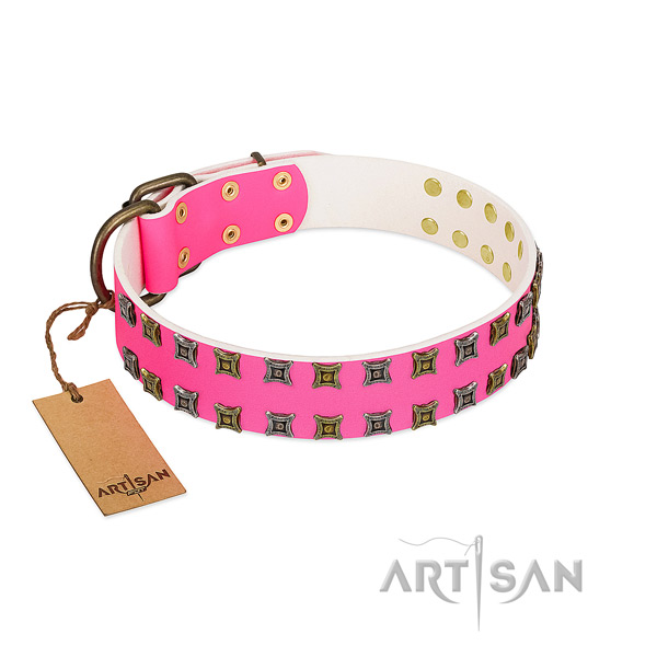 Full grain leather collar with significant embellishments for your canine