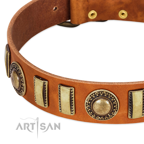 Reliable full grain leather dog collar with rust resistant hardware