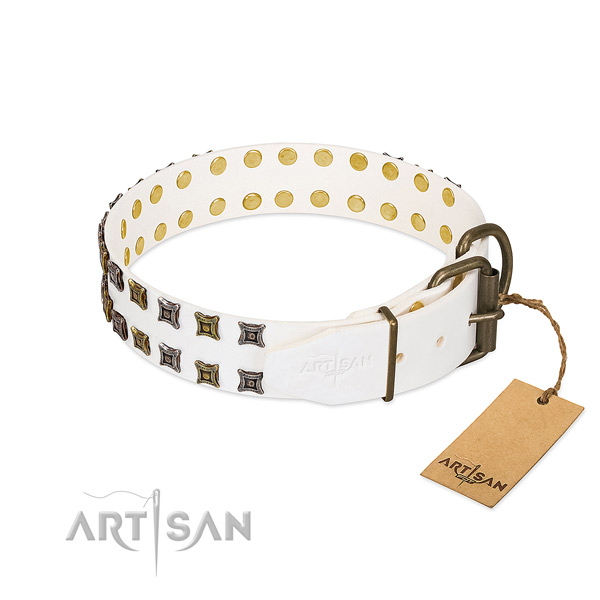 Full grain natural leather collar with incredible adornments for your dog