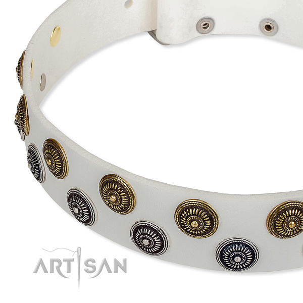 Basic training decorated dog collar of top quality full grain leather