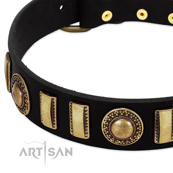 Top rate leather dog collar with reliable hardware