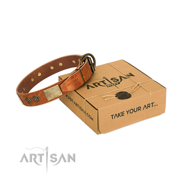 Durable fittings on genuine leather dog collar for walking