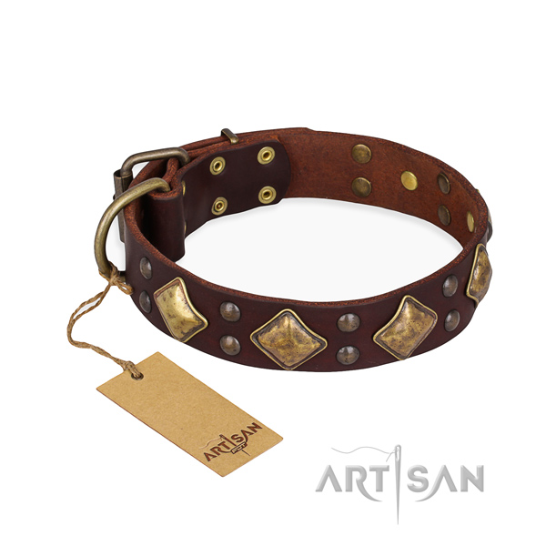 Handy use studded dog collar with durable hardware