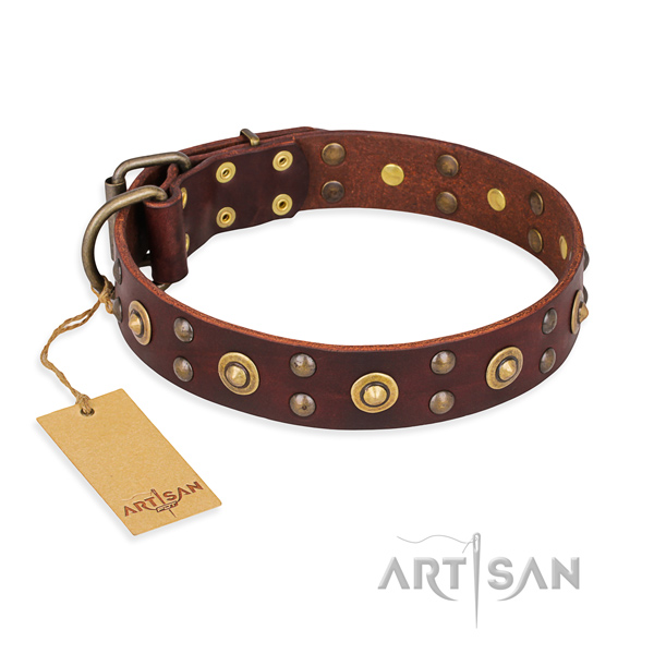 Stunning genuine leather dog collar with rust-proof hardware