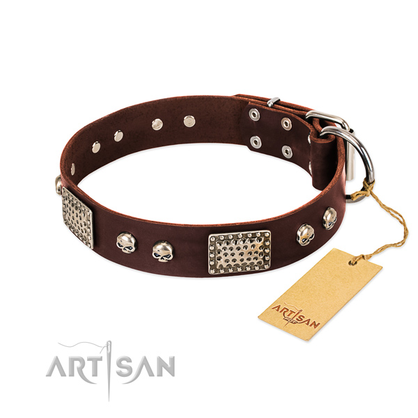 Easy adjustable genuine leather dog collar for walking your four-legged friend
