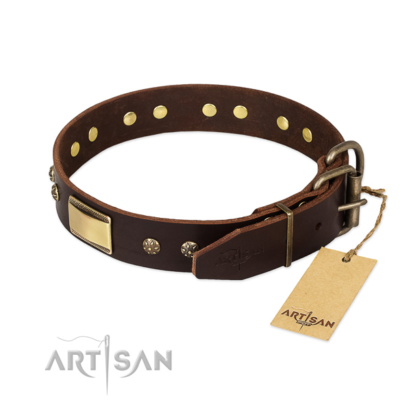 Fashionable genuine leather collar for your dog