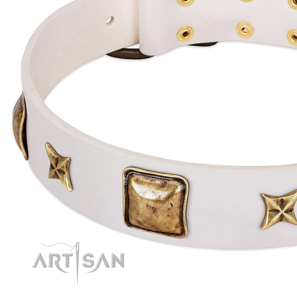 Corrosion proof embellishments on full grain genuine leather dog collar for your pet