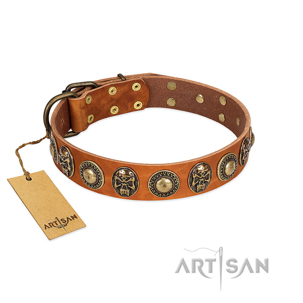 Easy to adjust natural leather dog collar for everyday walking your dog