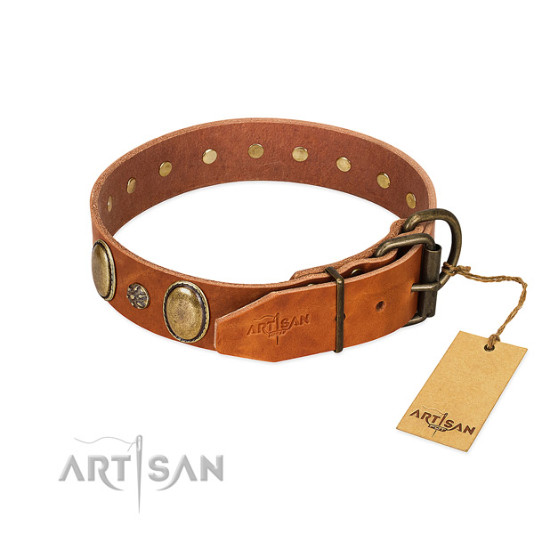 Daily use best quality genuine leather dog collar