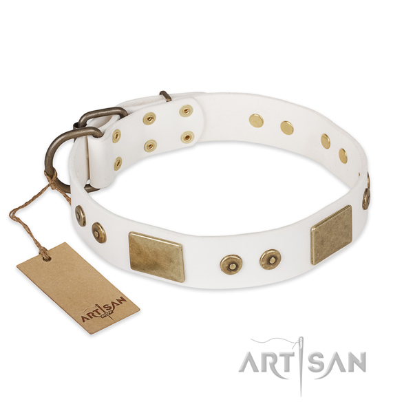 Handmade full grain leather dog collar for daily use