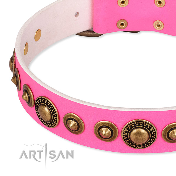 Reliable full grain leather dog collar handmade for your attractive canine