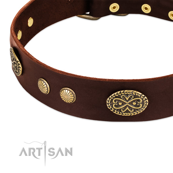 Rust-proof embellishments on Genuine leather dog collar for your doggie