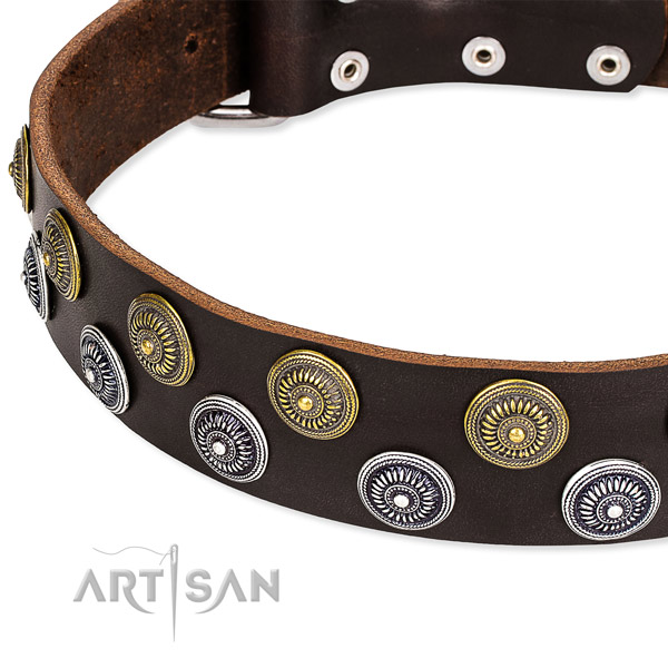 Everyday use decorated dog collar of best quality full grain genuine leather