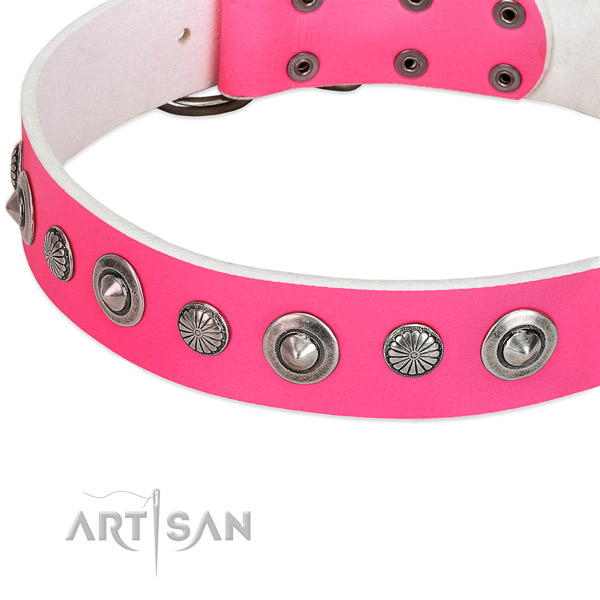 Full grain leather collar with corrosion proof hardware for your attractive dog