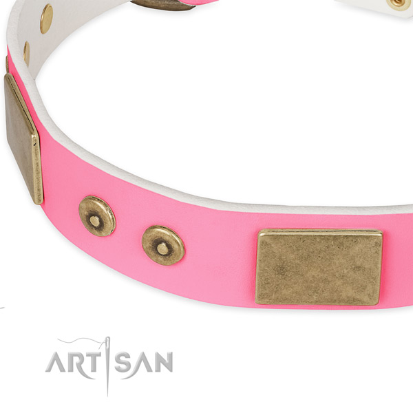 Full grain leather dog collar with adornments for comfy wearing