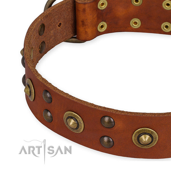 Full grain natural leather collar with reliable traditional buckle for your beautiful pet