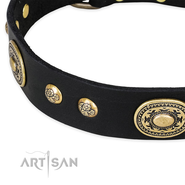Handcrafted genuine leather collar for your beautiful dog