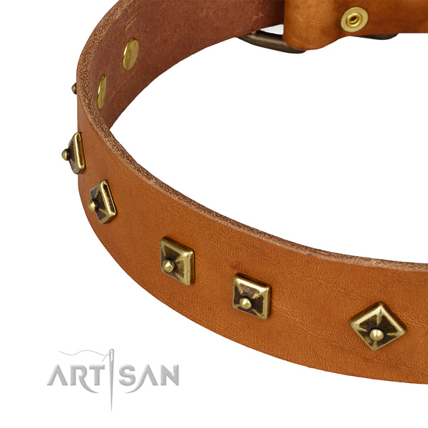 Handmade leather collar for your handsome four-legged friend