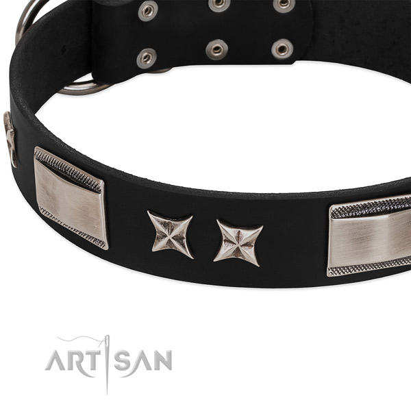 Quality full grain natural leather dog collar with reliable fittings