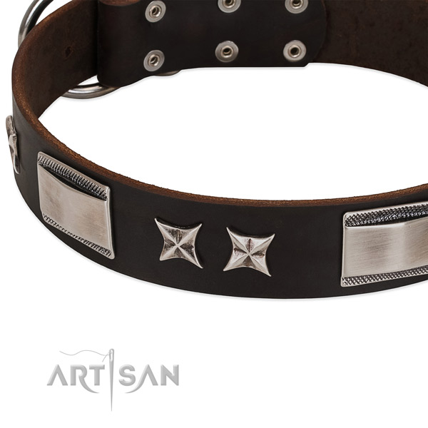 Handmade collar of full grain leather for your handsome dog
