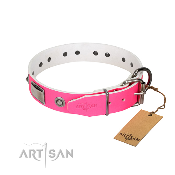 Designer dog collar of genuine leather with embellishments