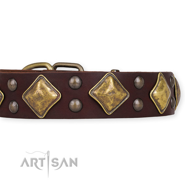 Full grain genuine leather dog collar with significant durable embellishments