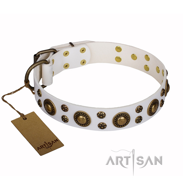 Easy wearing dog collar of best quality full grain natural leather with adornments
