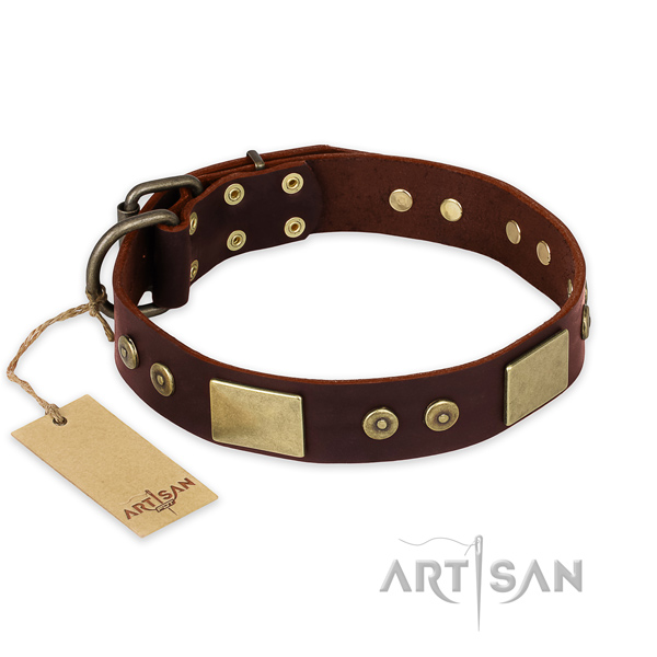 Inimitable genuine leather dog collar for walking