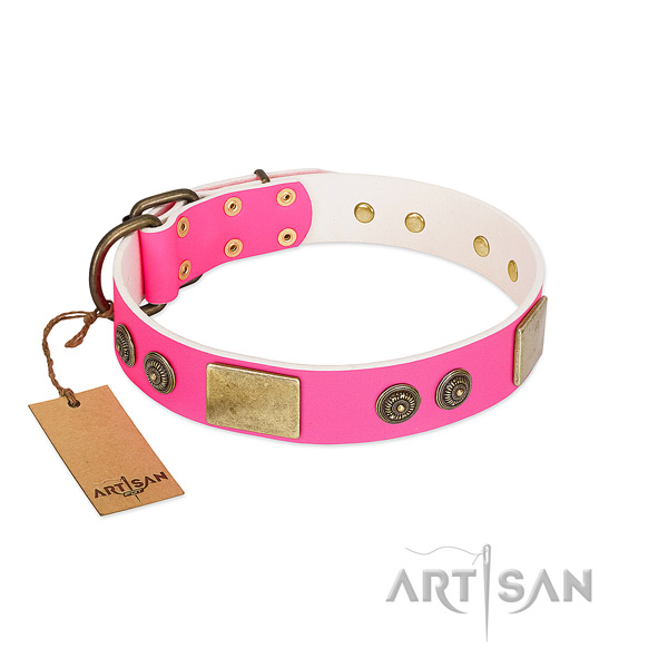 Fine quality natural genuine leather dog collar for walking