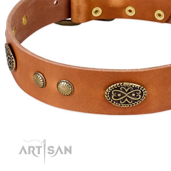 Corrosion resistant hardware on leather dog collar for your four-legged friend