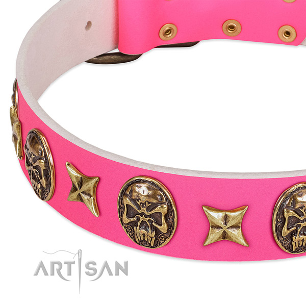 Full grain natural leather dog collar with stylish design studs