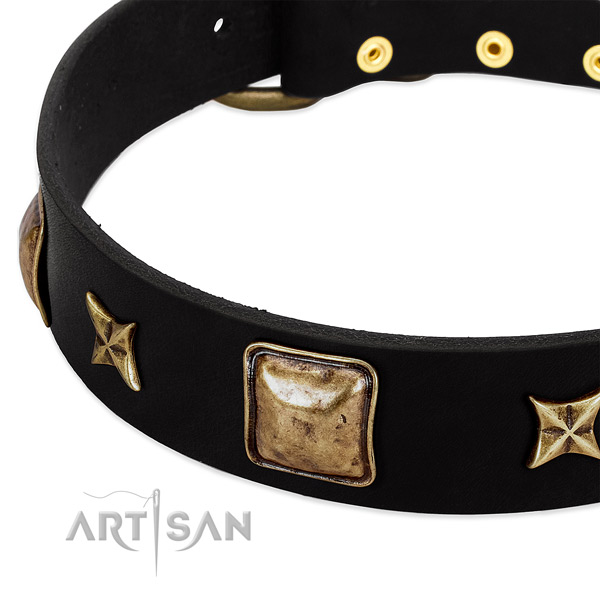 Full grain leather dog collar with extraordinary decorations