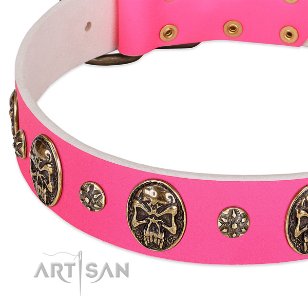 Fine quality dog collar crafted for your beautiful pet
