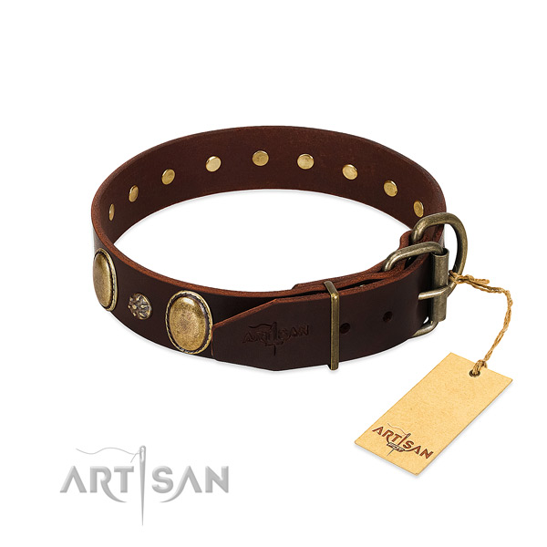 Fancy walking top rate natural genuine leather dog collar