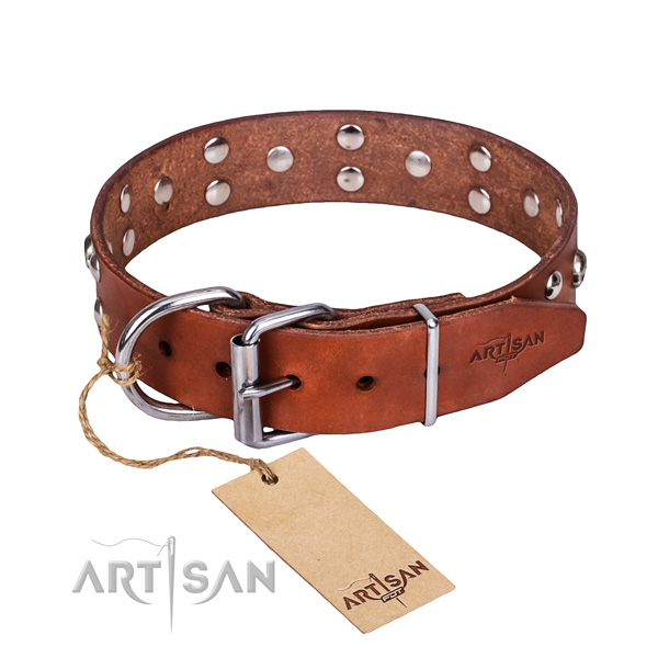 Easy wearing dog collar of quality natural leather with adornments
