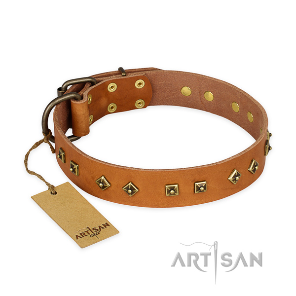 Adorned full grain leather dog collar with corrosion proof fittings