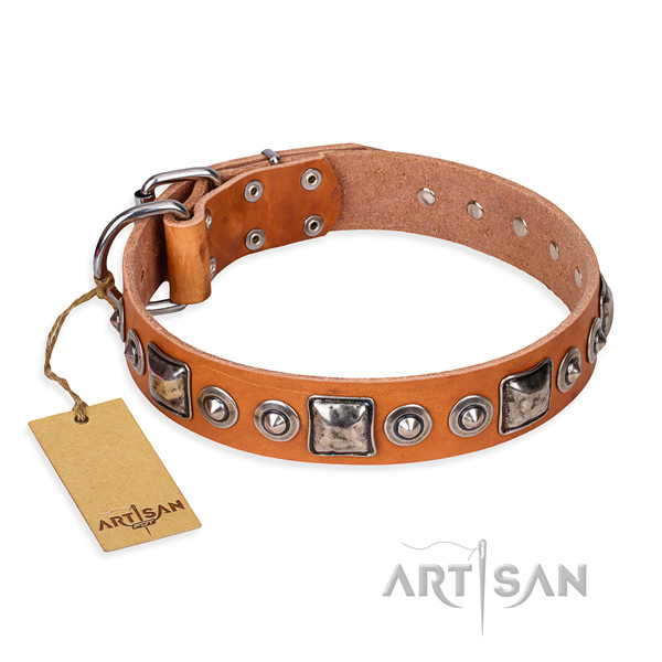 Full grain leather dog collar made of quality material with rust-proof fittings