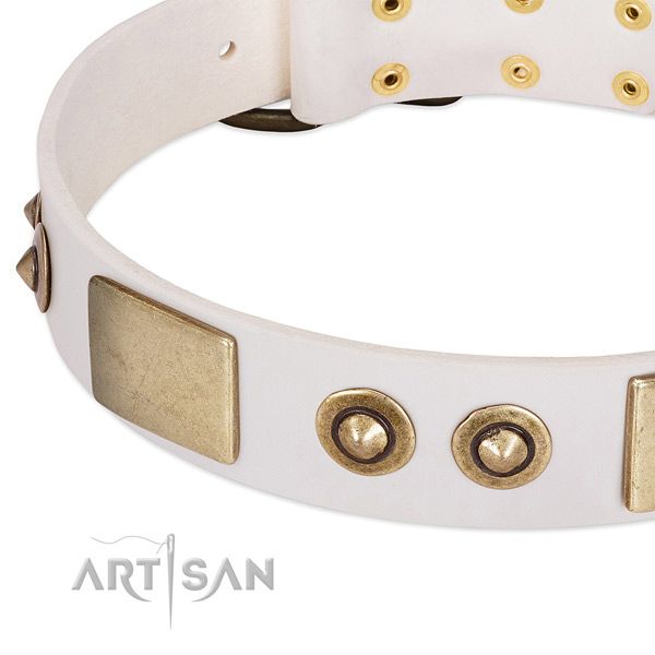 Strong buckle on leather dog collar for your dog