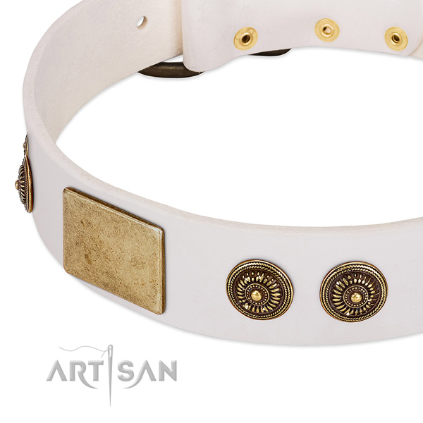 Adorned dog collar made for your stylish doggie