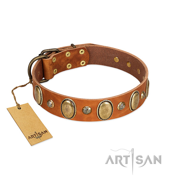 Full grain natural leather dog collar of best quality material with designer decorations