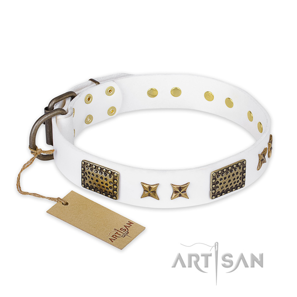 Designer full grain natural leather dog collar with reliable hardware